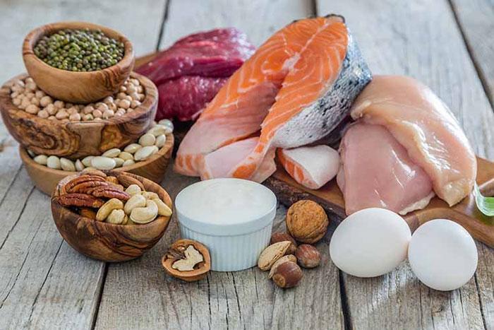اهمیت پروتئین ها