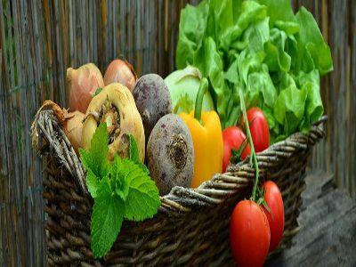 مواد غذایی مفید برای بیماران سرطانی