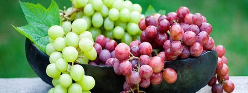 ۱۰ فایده انگور برای سلامتی