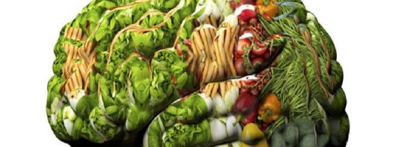 ۵ خوراکی مفید برای افزایش هوش