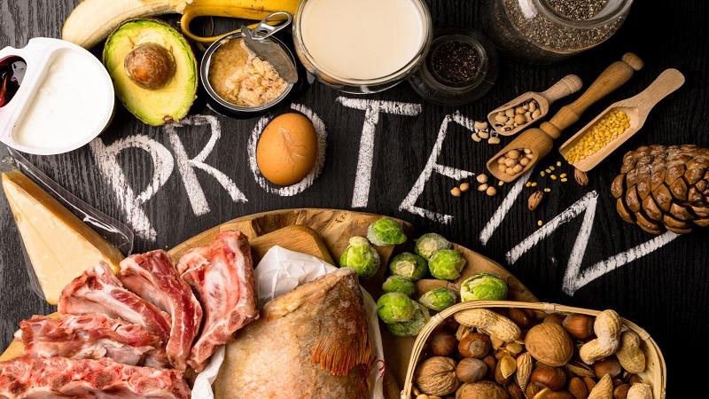 پروتئین