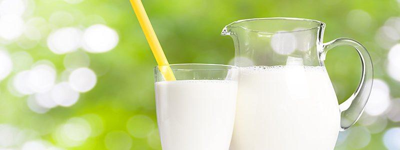 آیا شیر جایگزین مناسبی برای گوشت می باشد؟